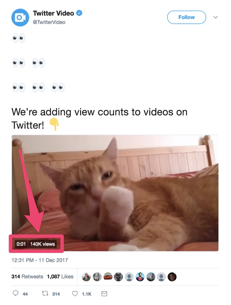 twitter video view count