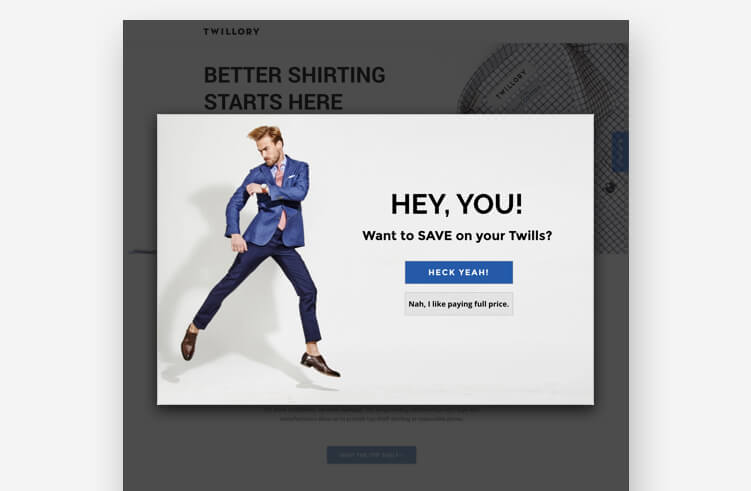 High-Converting Landing Page: Twillory Popup