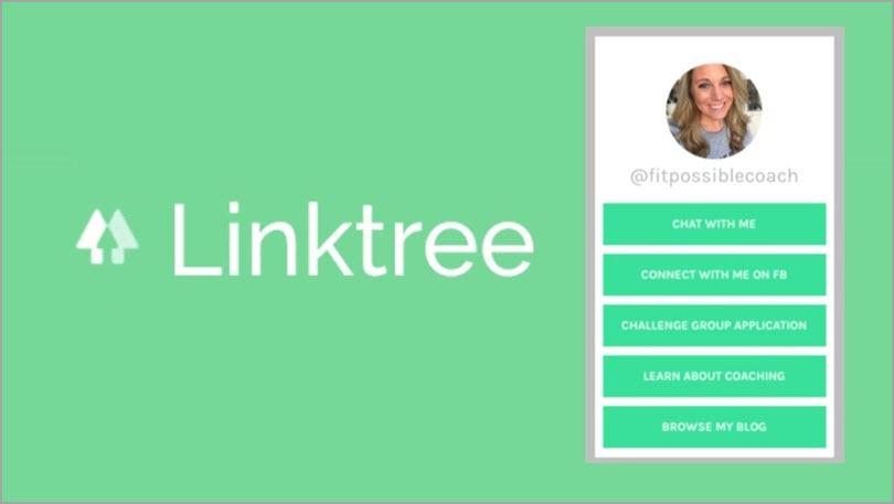 Utilize Instagram Bio for instagram marketing strategy