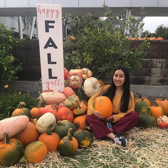 Google Pumpkin Patch