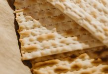 Programming Note: Offline For Passover 5780