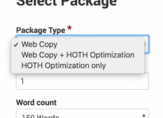 Introducing HOTH Web Copy: High-Quality Content For Your Website