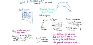 What Do Dolphins Eat? Lessons from How Kids Search — Best of Whiteboard Friday