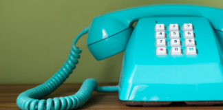 Does changing your business phone number affect SEO?